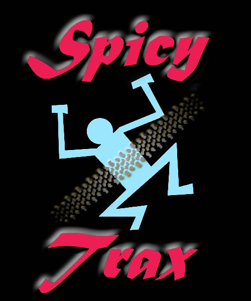 Spicy Trax - The Coverband